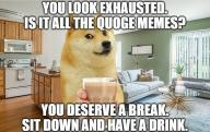 break choccy_milk deserve dog doge drink exhausted impact quoge relax sit text // 1079x681 // 397.4KB